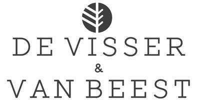 De Visser & van Beest Logo